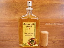 Spray Ambientador de CANELA-NARANJA - 100 ml.