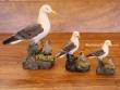 Gaviota y Polluelo (colección de 3 modelos diferentes)