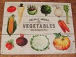 Placa metálica modelo VEGETABLES - 30 x 40 cm.